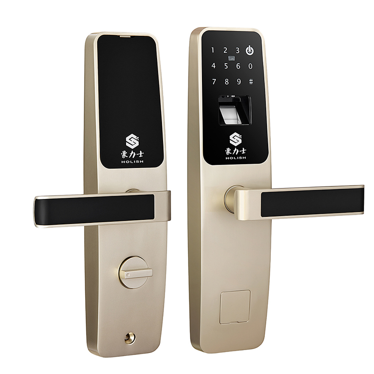 豪力士指纹密码锁家用门锁智能锁D3633F