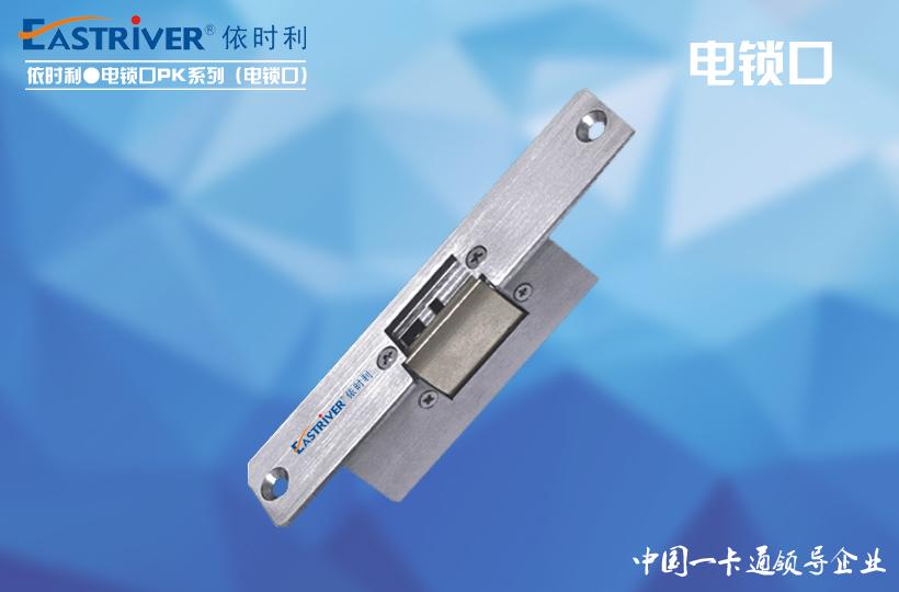 Access Control P Series - Electric Lock