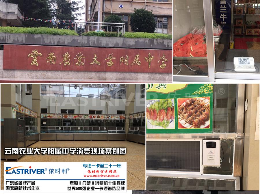 云南农业大学附属中学消费现场案例图.jpg