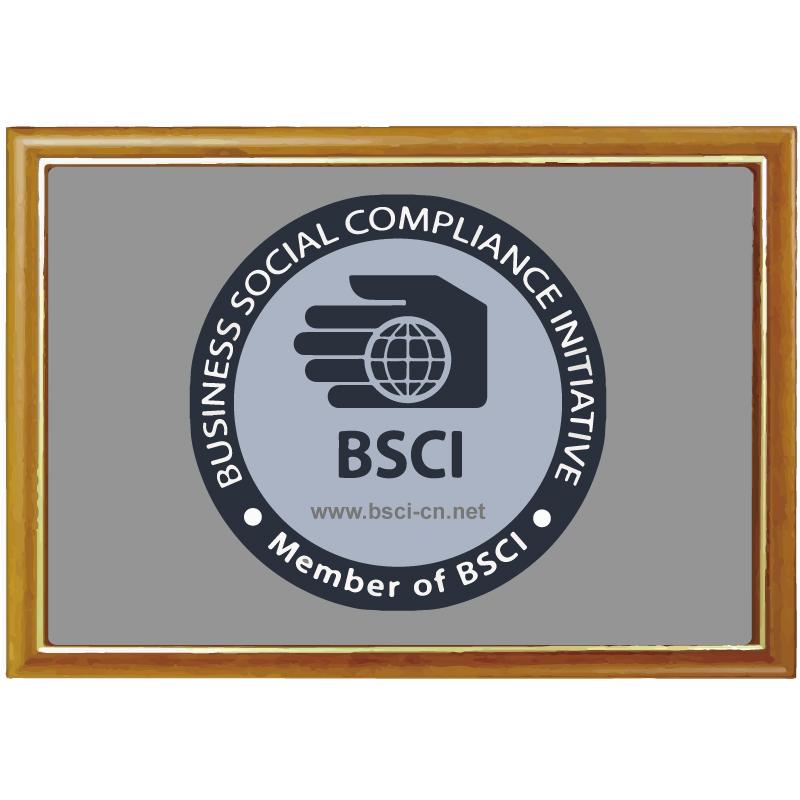 BSCI  factory