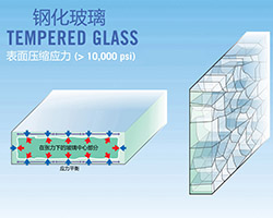 Introduction and function of tempered glass