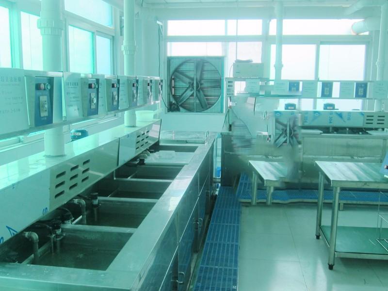 EP氧化清洗线