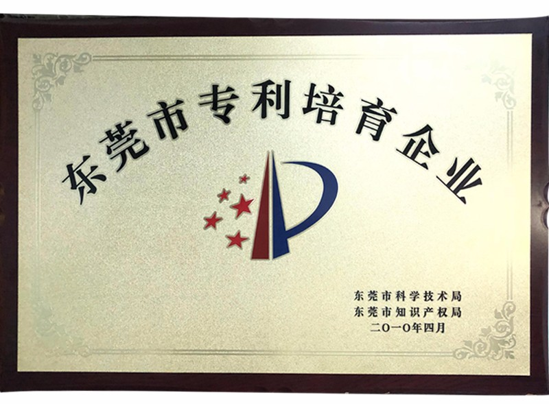 Dongguan Patent Cultivation Enterprise