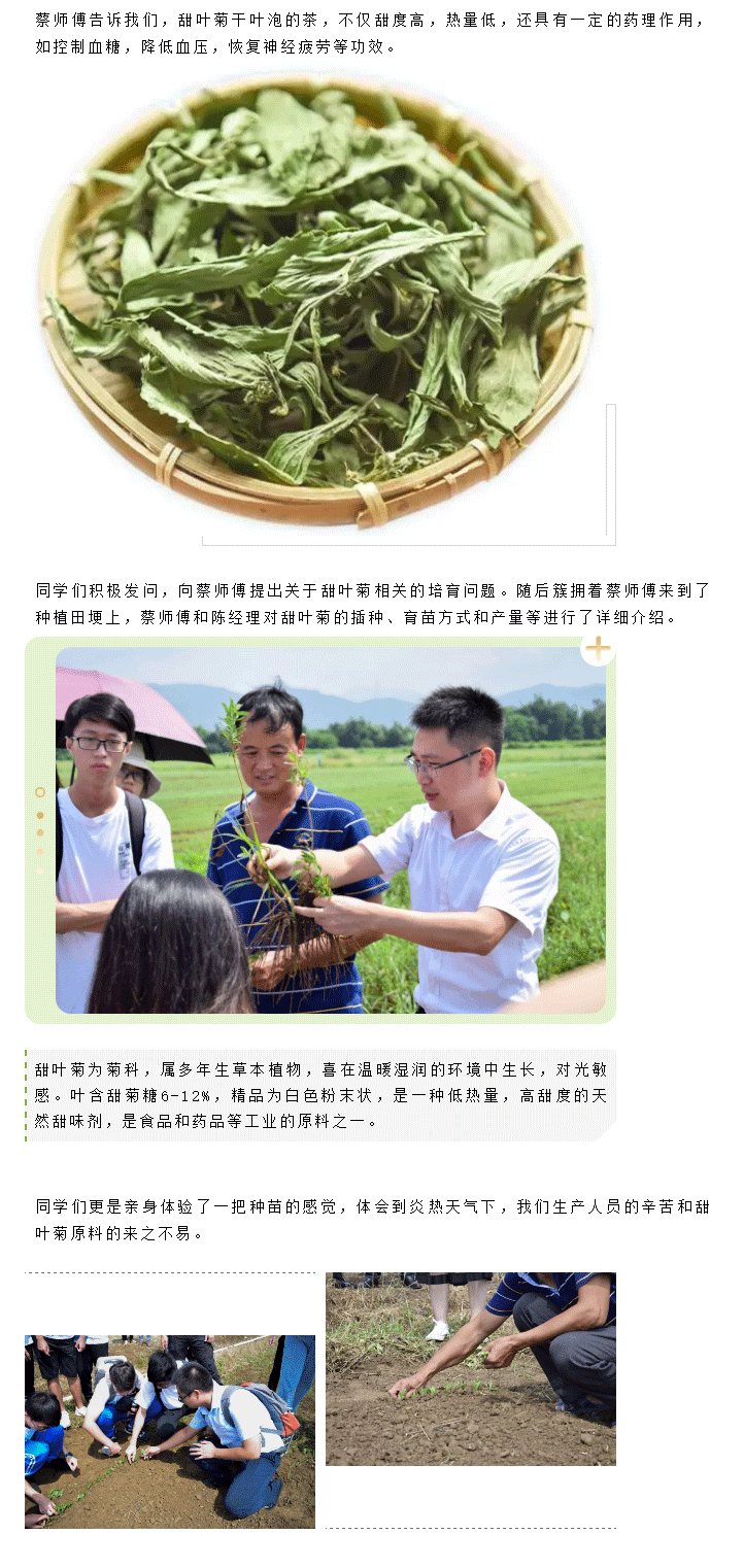 冠龙生物科技_04.png
