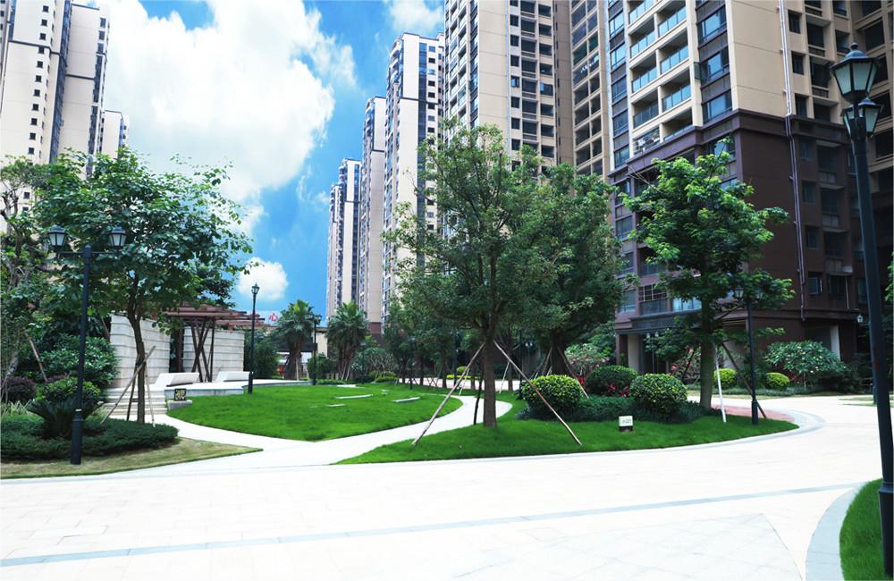 廣東惠州匯港商業廣場園林景觀工程