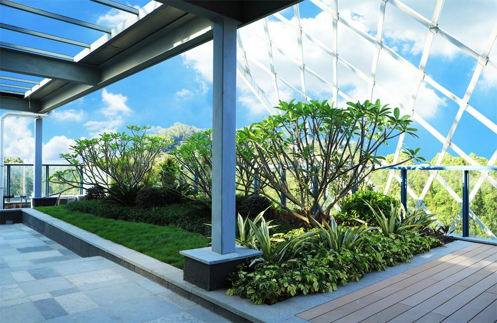 屋顶花园项目