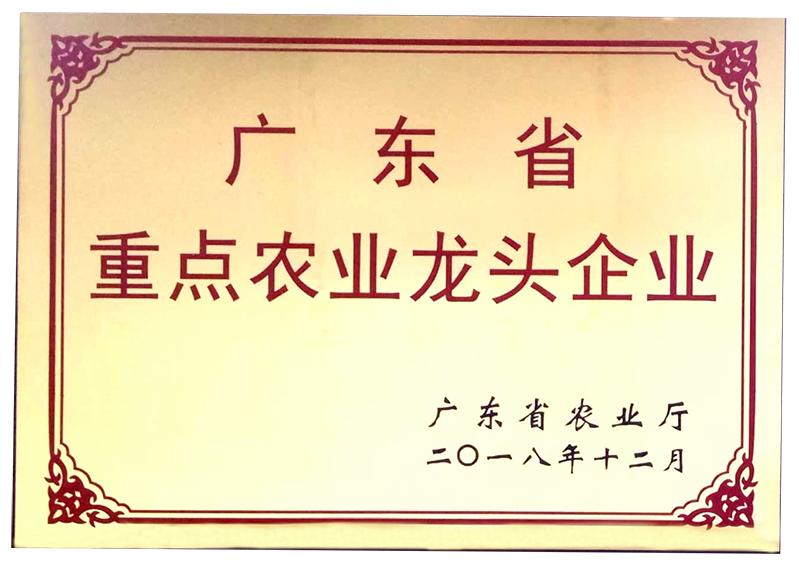 www.7200d.com