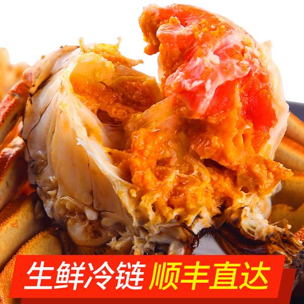 [阳澄湖大闸蟹8只]4公3-3.4两/只和4母2-2.4两/只 螃蟹礼盒装 顺丰包邮