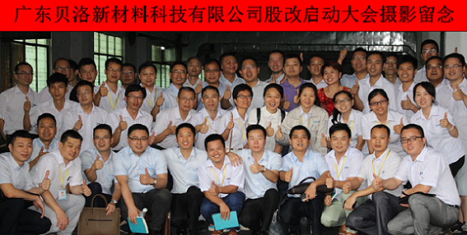 Initiation ceremony of company share reform