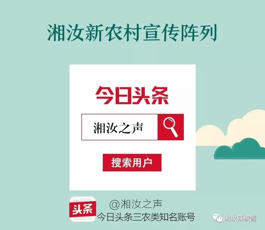 """""""湘汝之声""""系列报道:选择湘汝十大理由"""