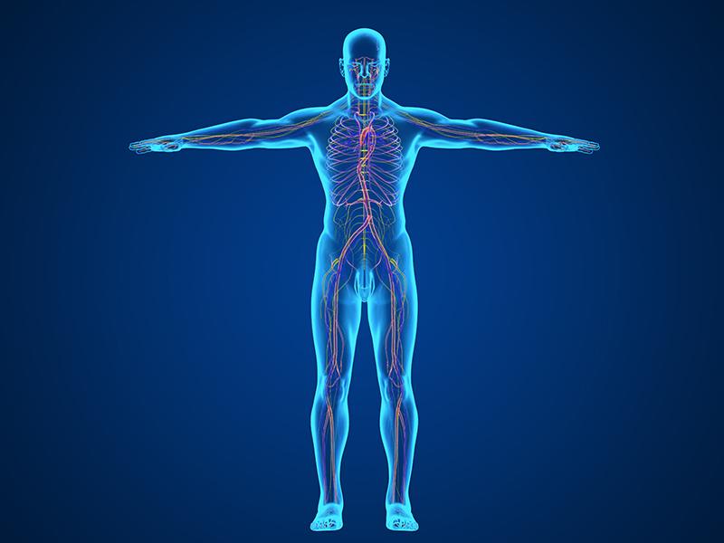 人体的酸碱度会对我们的生活会造成什么影响了?