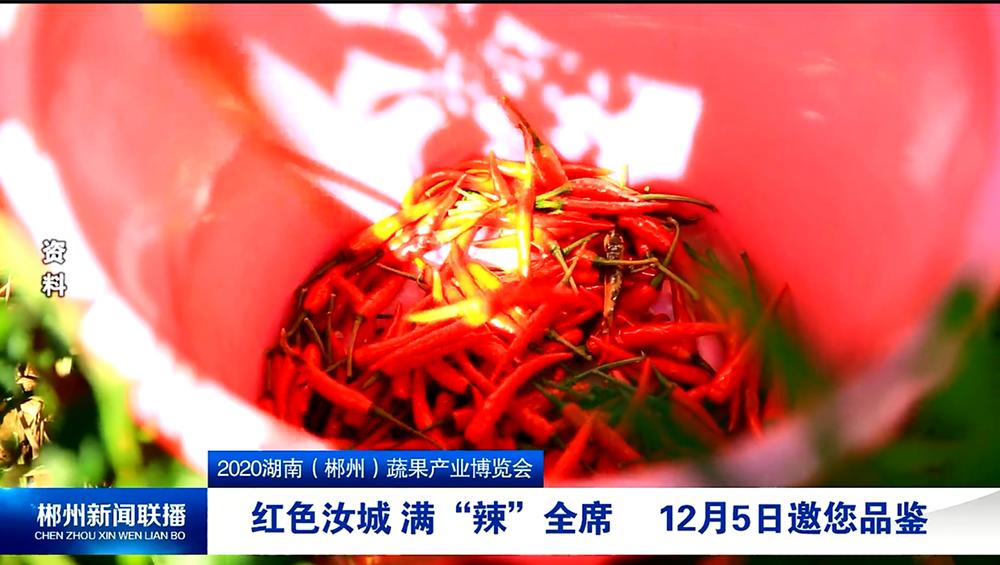 """2020湖南(郴州)蔬果产业博览会:红色汝城 满""""辣""""全席 12月5日邀您品鉴"""