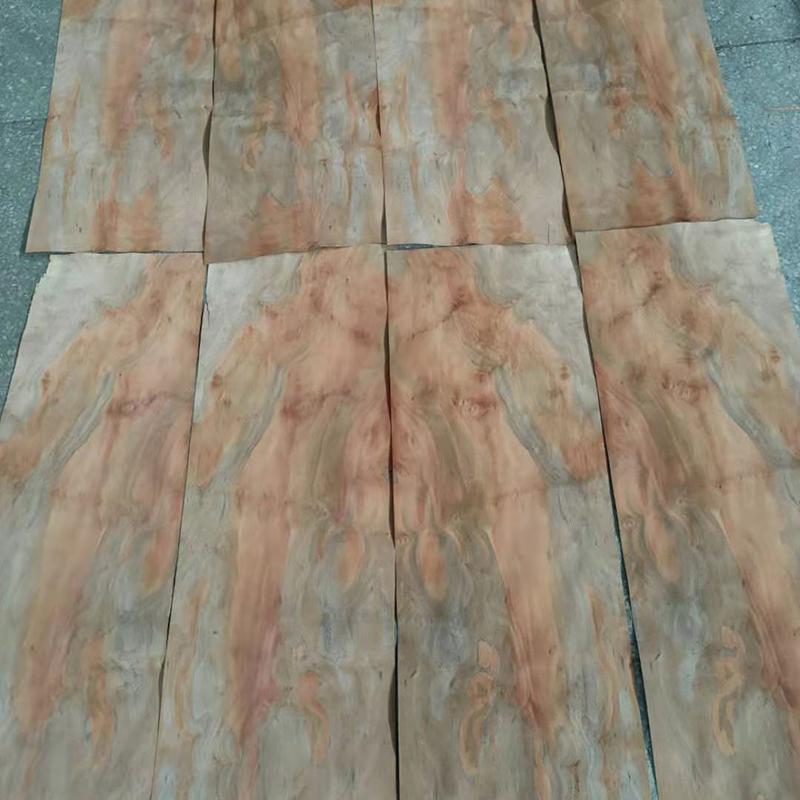 American Chestnut Burl Veneer